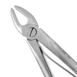 155C2 English Pattern Pedo Extraction Forceps